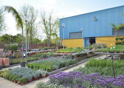 Vivero-Centro-de-Jardineria-Sevilla-Dos-Hermanas-Instalaciones-043