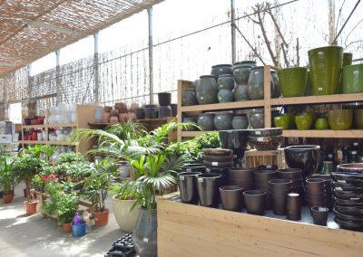 Vivero-Centro-de-Jardineria-Sevilla-Dos-Hermanas-Instalaciones-045